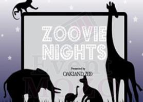 EventMozo ZOOVIE NIGHT